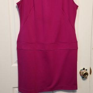 Raspberry Sandra Darren Sleeveless Dress